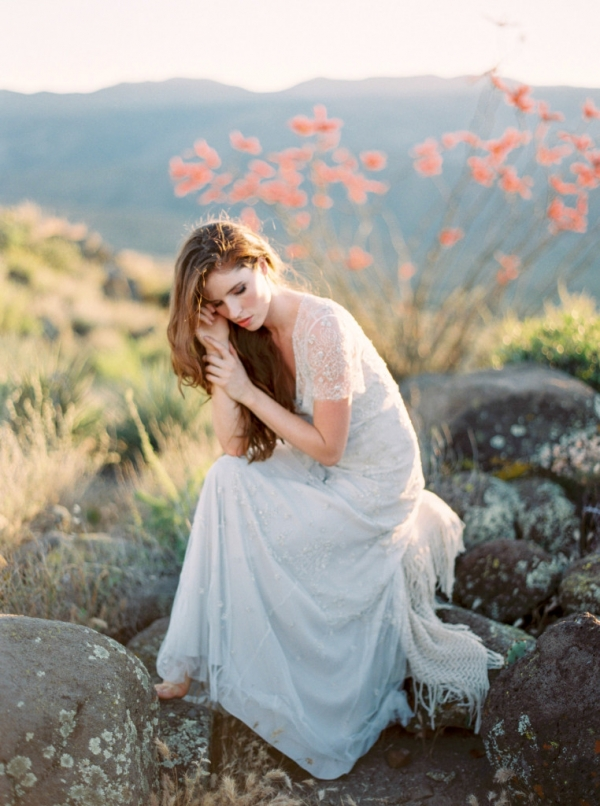 Arizona Wedding Planner Summer Discount